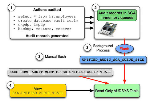 Unified Auditing in Oracle 12c « Administration « Oracle